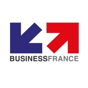 cropped-logo-business-france.jpg